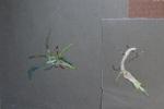 óleo sobre papel de lija, 30x20cm